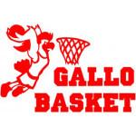 cropped-logo-gallo2